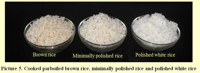 Benefits-Brown-Rice-Diabetes-Mohans-Chennai-4